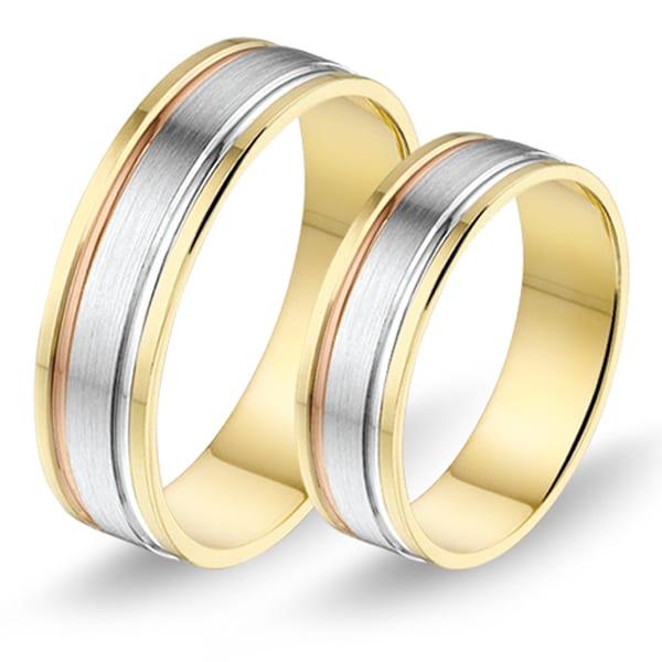 3B1 - Alliance bi-color trouwringen