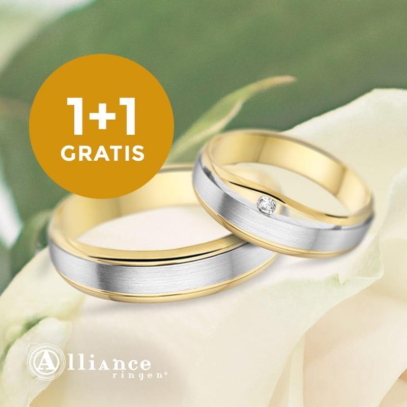Actie Alliance Ringen
